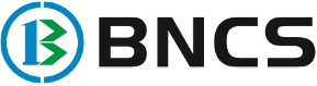 Biz N Consumer Solutions (BNCS)